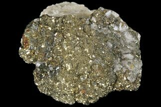 Pyrite & Calcite - Fossils For Sale - #80730
