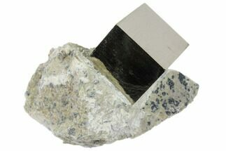 Pyrite - Fossils For Sale - #82074