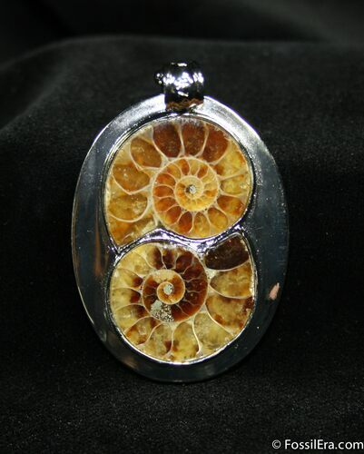 Ammonite Pendant