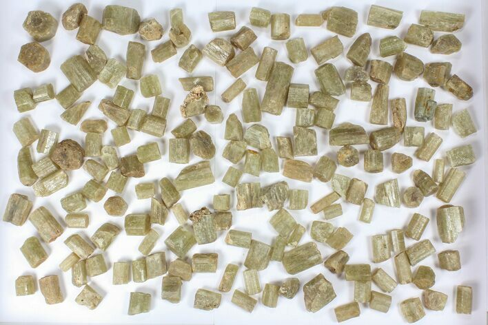 Wholesale Flot:  1440g Apatite Crystals From Morocco - 150+ Pieces