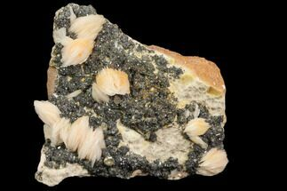 "2.6"" Cerussite Crystals with Bladed Barite on Galena - Morocco For Sale, #82343"