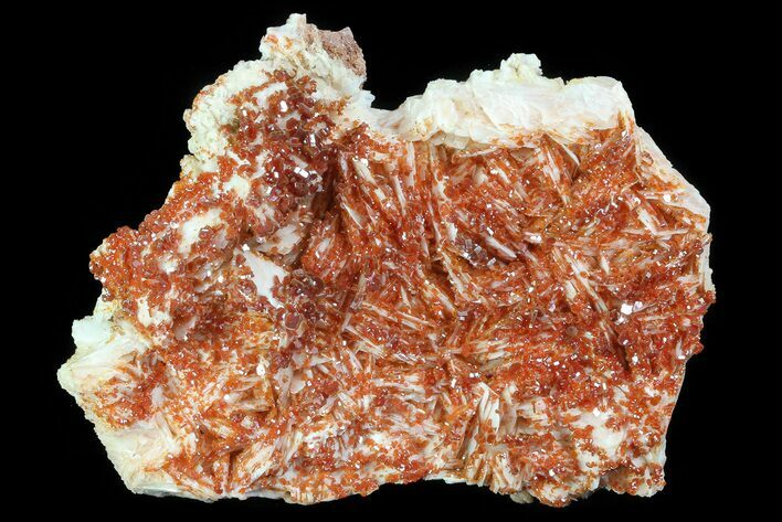 "3.8"" Ruby Red Vanadinite Crystals on Pink Barite - Morocco"