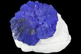 "Buy .8"" Brilliant Blue Azurite Sun - Australia - #82684"