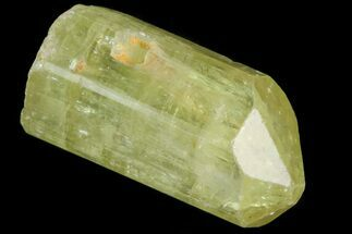 ".6"" Lustrous Yellow Apatite Crystal - Morocco For Sale, #82565"
