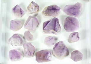 "Buy Wholesale Lot: 6.5 Lbs Amethyst Crystals (2-4"") - Brazil - #77857"