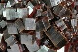 "3.8"" Huge, Red Vanadinite Crystal (NEW FIND) - Morocco - #84338-2"