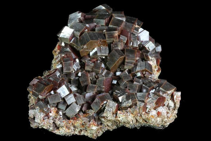 "3.8"" Huge, Red Vanadinite Crystal (NEW FIND) - Morocco"