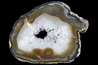 "6.7"" Polished Brazilian Agate Slice For Sale, #85181"