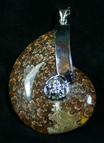 "Large Ammonite Fossil Pendant - 2.3"" Tall"