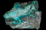 "2.3"" Botryoidal Chrysocolla and Malachite - Congo - #87162-1"