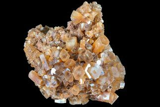 Aragonite - Fossils For Sale - #87768