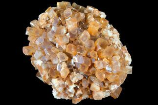 Aragonite - Fossils For Sale - #87780