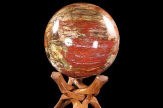 "Large, 7.3"" Colorful Petrified Wood Sphere - Madagascar For Sale, #88724"