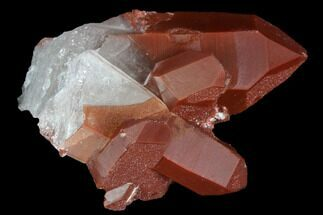 "Buy 2.2"" Natural Red Quartz Crystal Cluster - Morocco - #88915"