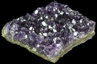 "Buy 2.7"" Dark Purple Amethyst Cluster - Uruguay - #90169"