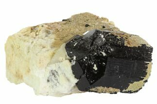 "1.8"" Black Tourmaline (Schorl), Aquamarine & Feldspar - Namibia For Sale, #90680"