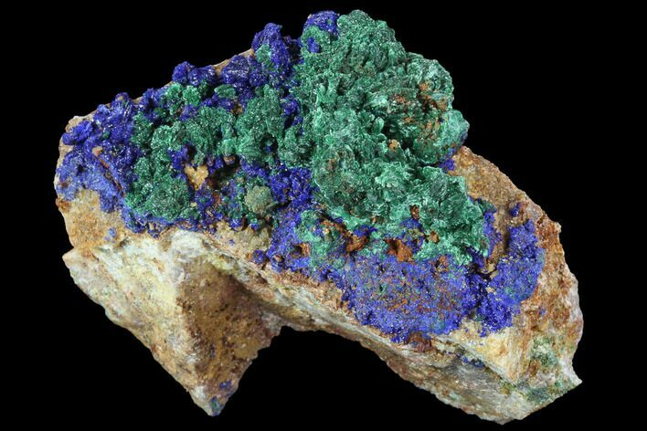 "2.8"" Sparkly Malachite with Azurite Crystal Specimen - Morocco"