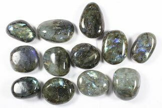 Labradorite - Fossils For Sale - #90522