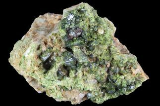"2.3"" Green Epidote Crystal Cluster - Morocco For Sale, #91199"