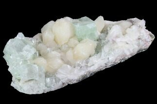 "Buy 5.7"" Zoned Apophyllite Crystals With Stilbite - India - #91321"