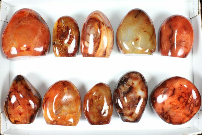 "Wholesale Lot: 3-4"" Cut Base Polished Carnelian - 10 pieces"