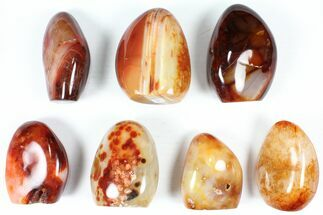 "Wholesale Lot: 3-4"" Cut Base Polished Carnelian - 7 pieces For Sale, #91535"