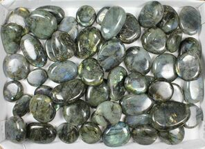 Labradorite - Fossils For Sale - #90660