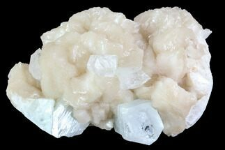 "Buy 4.1"" Zoned Apophyllite Crystals With Stilbite - India - #92245"