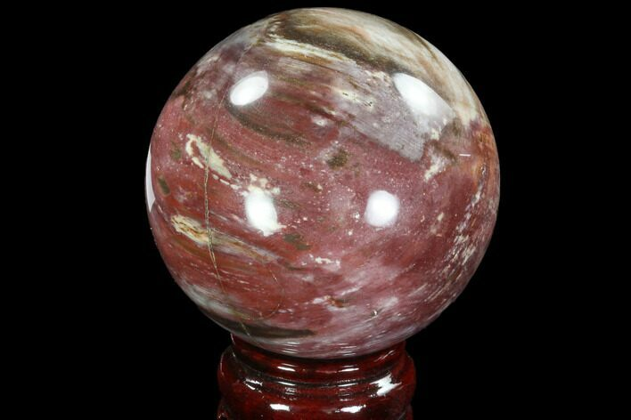 "Bargain, 2.9"" Colorful Petrified Wood Sphere - Madagascar"