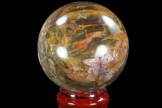 "Buy 5.1"" Colorful Petrified Wood Sphere - Madagascar - #92998"
