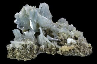 "3.7"" Blue Barite and Pyrite Association - Morocco For Sale, #91430"