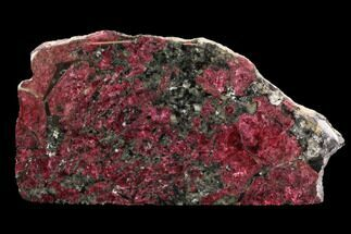 "Buy 4.9"" Brilliant, Magenta, Polished Eudialyte Slab - Russia - #93259"