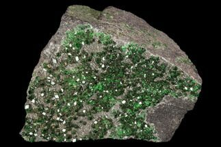 "2"" Druzy Green Uvarovite (Garnet Group) - Russia For Sale, #93434"