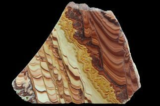 "5.4"" Polished Slab Of Rolling Hills Dolomite - Mexico For Sale, #93614"