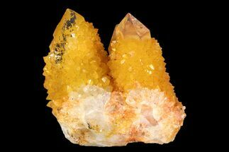 "1.9"" Sunshine Cactus Quartz Crystal - South Africa For Sale, #93686"
