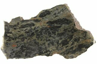 Chalcopyrite & Chlorite (Black) Schist - Fossils For Sale - #93798
