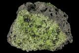 "3.2"" Peridot in Basalt - Arizona - #93963-1"