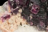 "3.6"" Dark Purple Cubic Fluorite on Quartz - China - #94309-2"