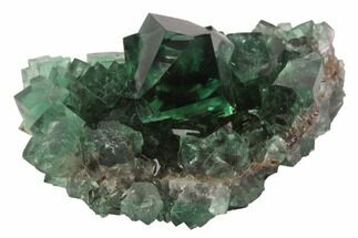 "1.77"" Fluorite Crystal Cluster -  Rogerley Mine For Sale, #94535"