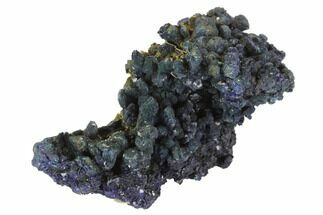 "2"" Dark Blue Azurite with Malachite - Laos For Sale, #95783"