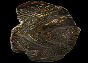 "Buy 10.1"" Polished Tiger Iron Stromatolite - (2.7 Billion Years) - #96232"