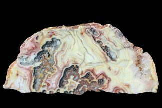 "6.9"" Polished, Crazy Lace Agate Slab - Western Australia For Sale, #96245"
