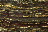 "8.2"" Polished Tiger Iron Slab - (2.7 Billion Years Old) - #95906-1"