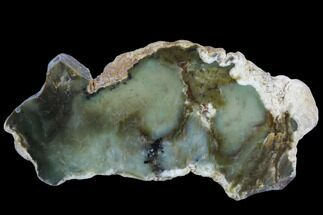 "5.7"" Polished Newman Opal Slab - Western Australia For Sale, #96281"