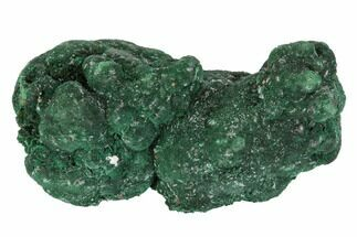 "2.7"" Vivid Green, Atacamite Crystal Cluster - South Australia For Sale, #96314"