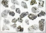 Flat - Pyrite, Galena, Quartz, Etc From Peru - 41 Pieces - #97062-2