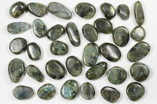 Labradorite - Fossils For Sale - #90543