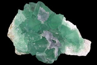 Fluorite  - Fossils For Sale - #98070