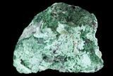 "1.45"" Atacamite & Chrysocolla Association - Peru - #98127-1"