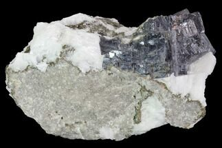 "2.3"" Galena, Marcasite & White Barite Association - Missouri For Sale, #96362"
